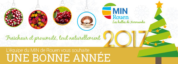min-rouen-bandeau-mail-voeux-2017